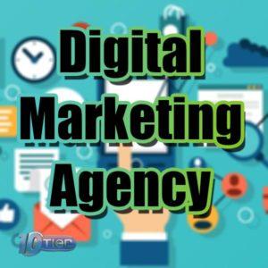 Local Digital Marketing Experts
